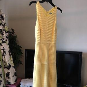 Yellow mid calf dress NEW from Dillards